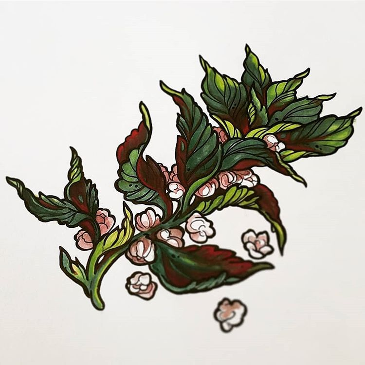 Lindsay Tebeck |  Nettle |  Gouache & Ink 11x14 (framed) $175.00